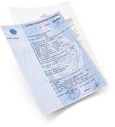 <span>Выдается полный пакет разрешительной документации для регистрации в органах ГИБДД, включая новый ПТС</span>